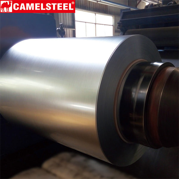 Steel Coil |  Galvanized Steel